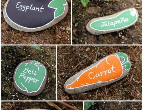 Des idées créatives pour votre jardin