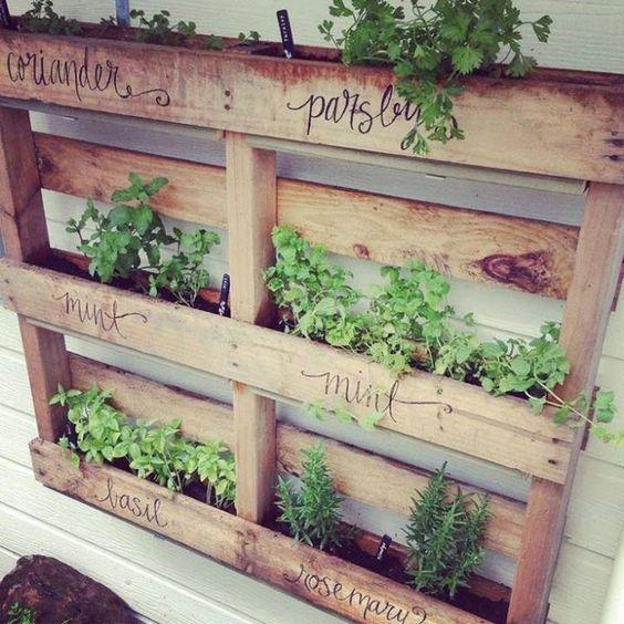 Un jardin avec des palettes de bois - C\'est ça la vie