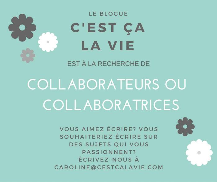 blogue c'est ça la vie
