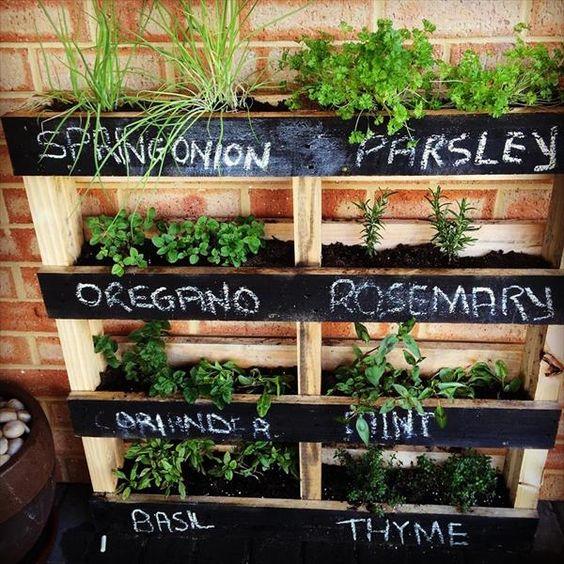 plantes aromatiques palette de bois